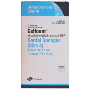 Gelfoam Dental Sponge
